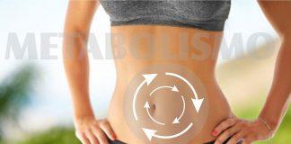 El metabolismo es el conjunto de procesos físicos y químicos y de reacciones a las que está sujeta una célula
