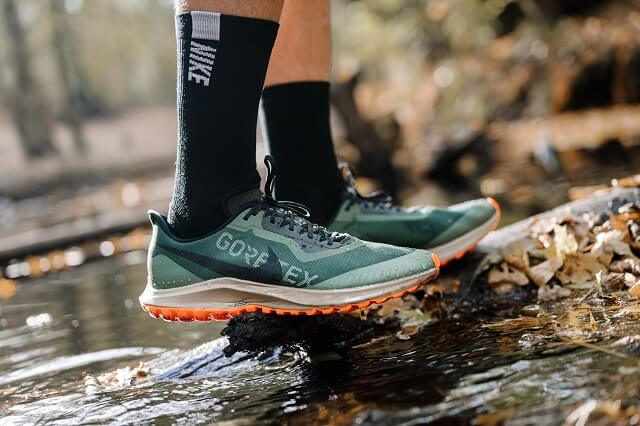 Conoce las Nike Pegasus 36 Trail GORE TEX